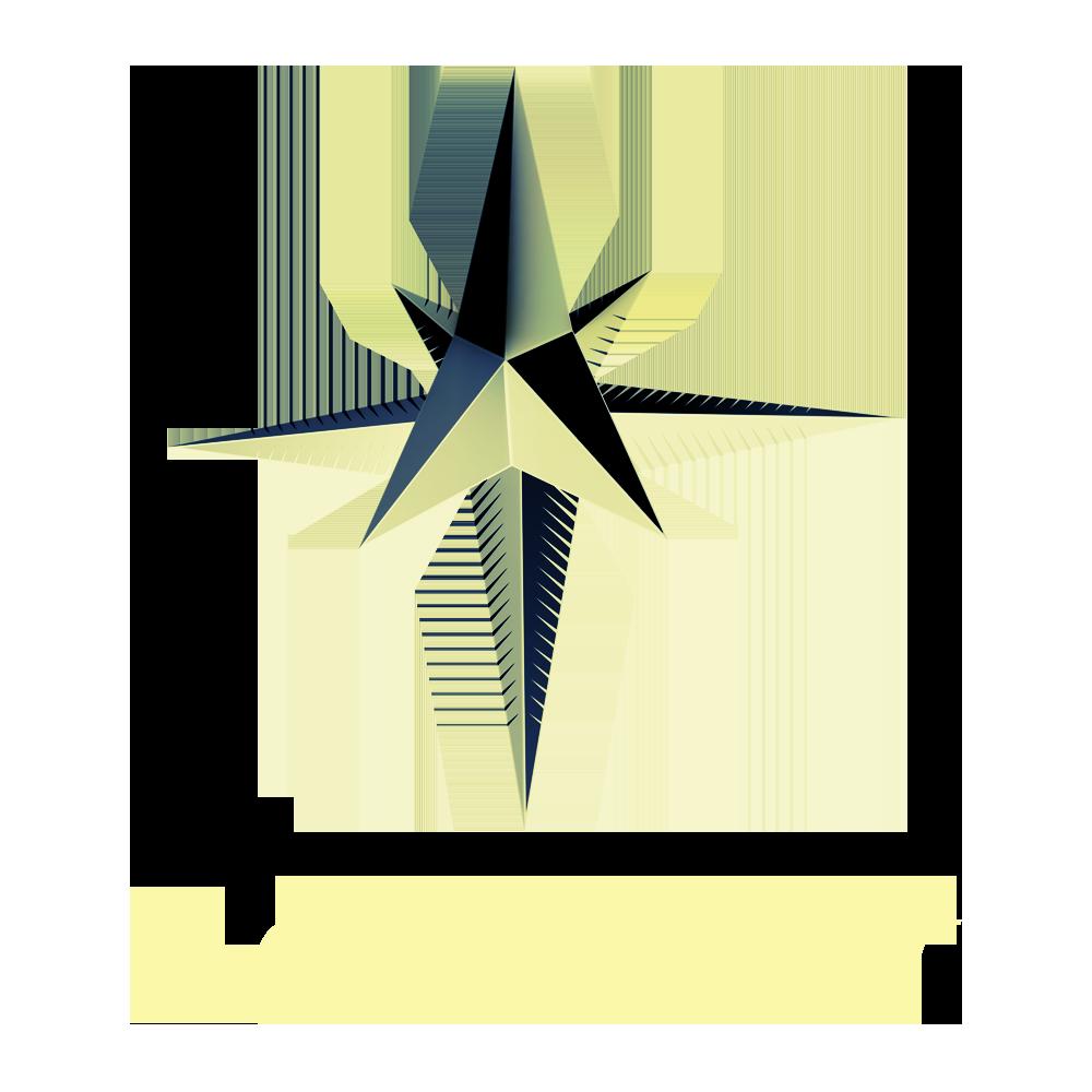 NorthStar_Logo_Black_Trans